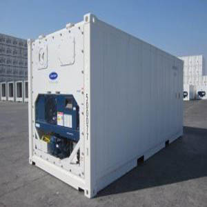 40ft Container Fish Storage Cold Room