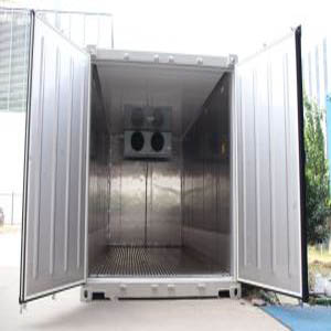 20ft Shipping Freeze Container