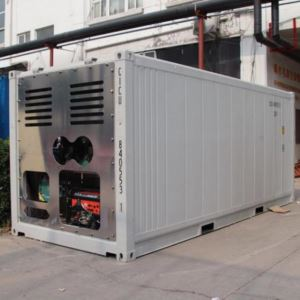 Solar Controlled Atmosphere Reefer Container 20ft