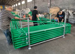 Green Scaffold Props Packing